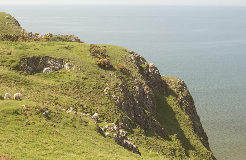 Rhossili Bay Cliffs