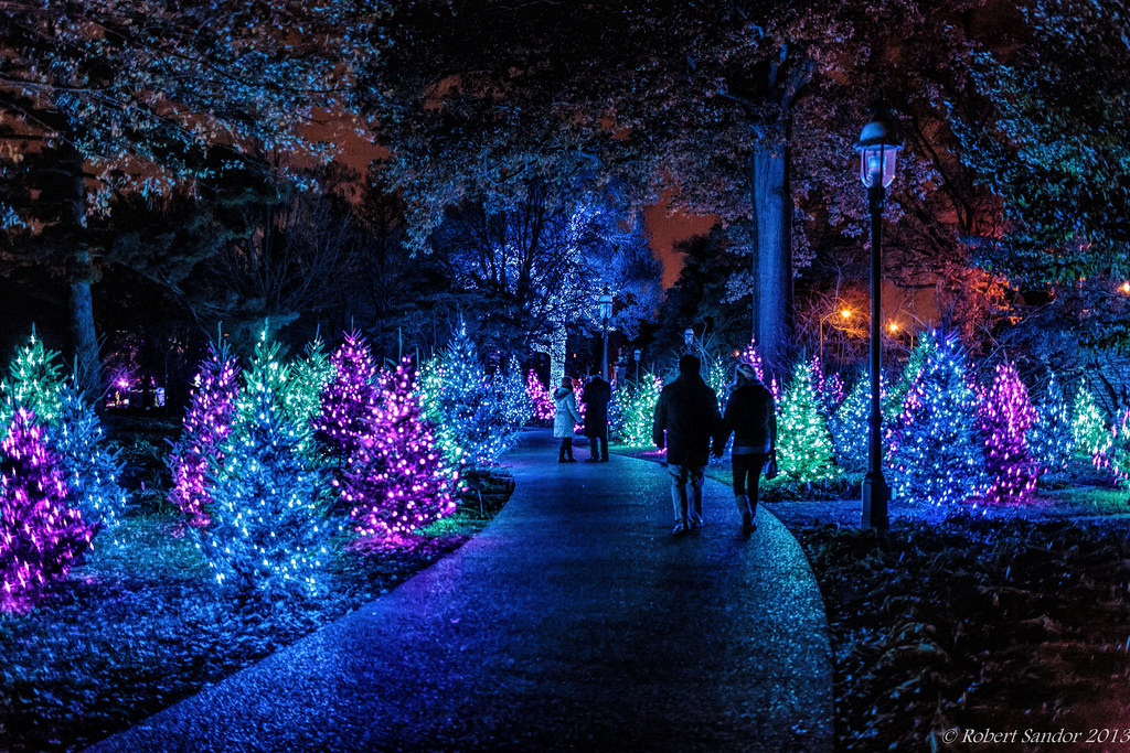 Garden Glow 2 Bob Sandor 2016 Flickr