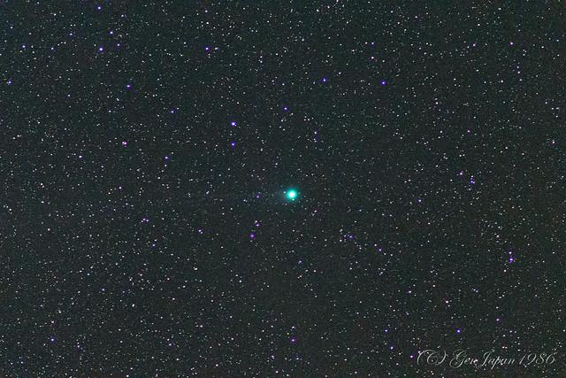 式根島 ラブジョイ彗星