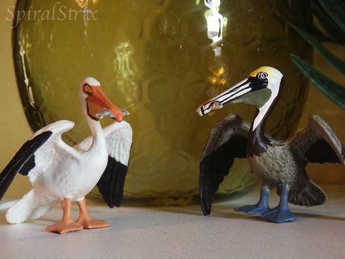 safari ltd. pelicans