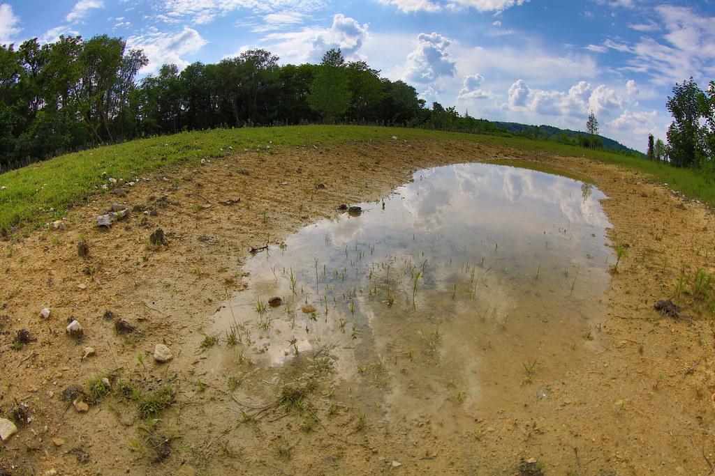 Le parc du peuple de l 39 herbe nicolas duprey conseil for Yvelines parc