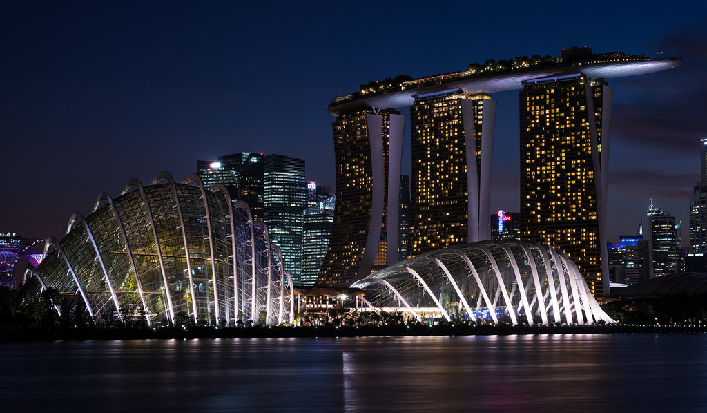 Night view of Gardens by the bay, Singapore | Mac Qin