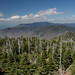 Clingmans Dome, North View