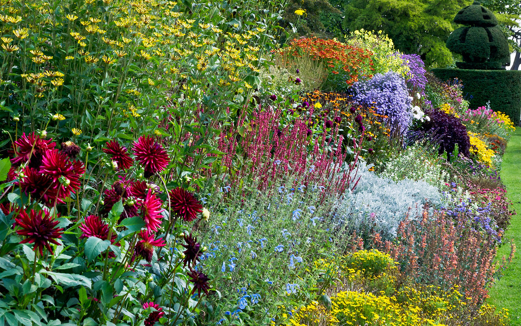 Traditional flower borders at nymans garden sussex uk for Garden flower borders designs
