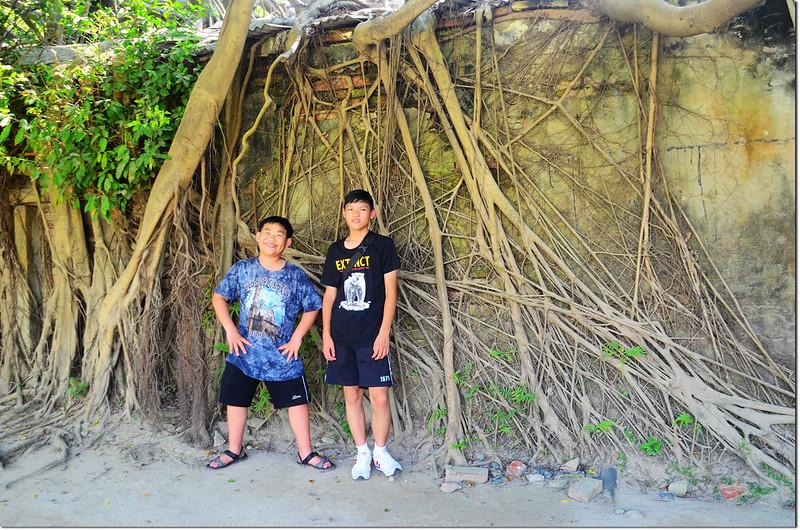台南安平樹屋 (12)