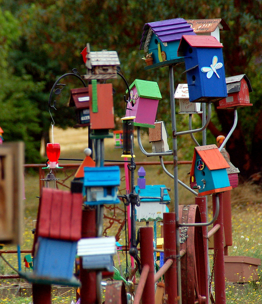 Birdhouses Birdhouses Along Eola Hills Rd Near Brooks