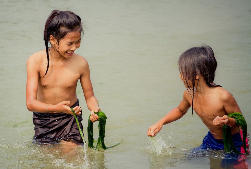 Kaipen  Two Girls Collect River Weed From The Nam Khan -6965