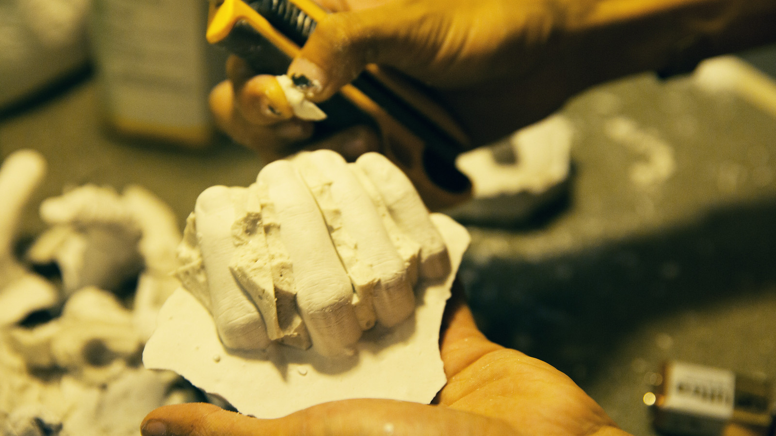 0895alginate_handsappear
