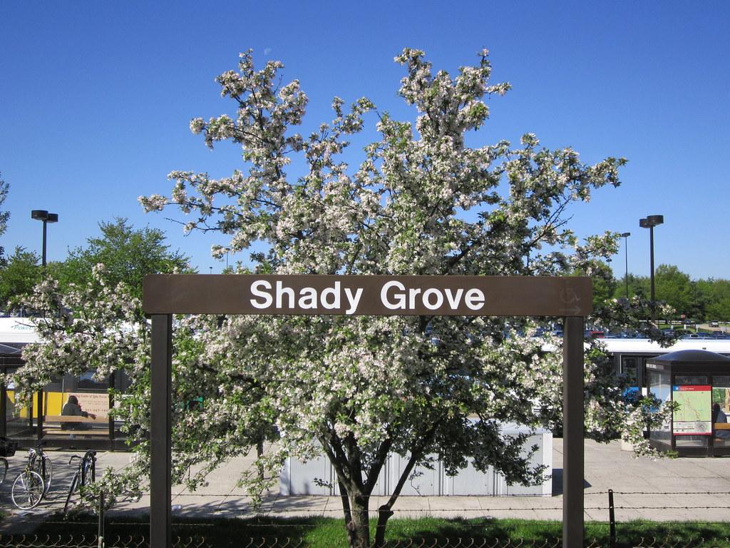 shady grove hindu single men Shady grove fertility started as a tiny maryland clinic  the hindu - june 25th,  men's journal - june 1st, 2017 shady grove fertility,.
