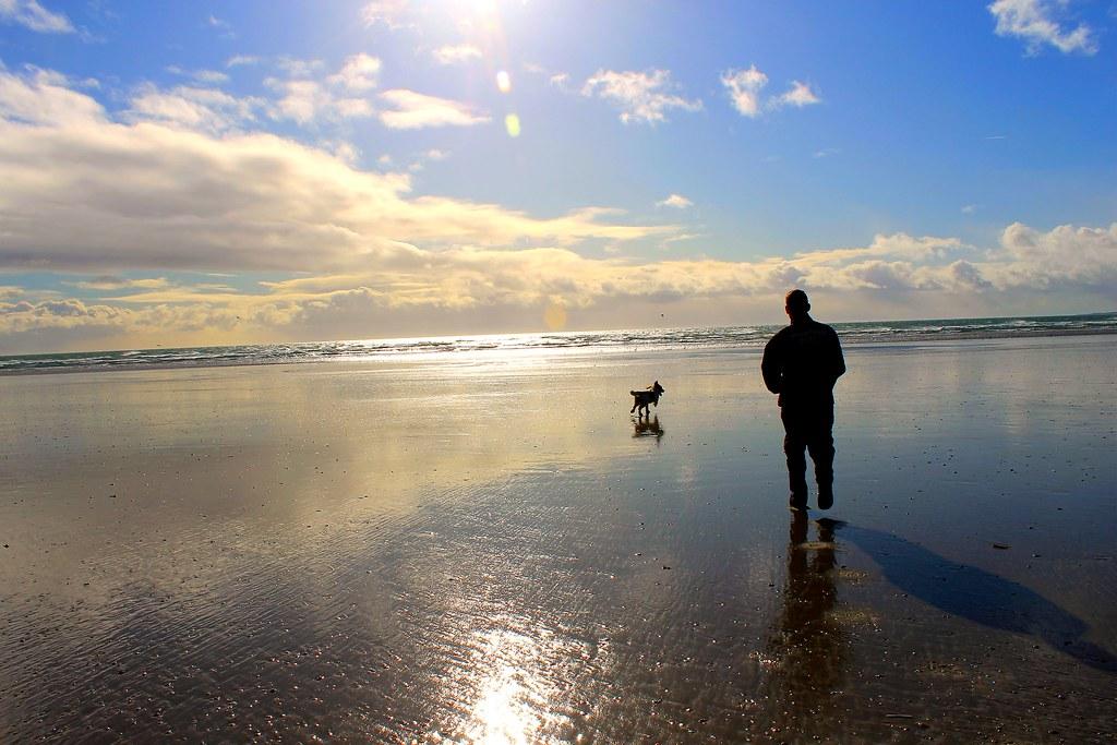 Dog Walking Owner