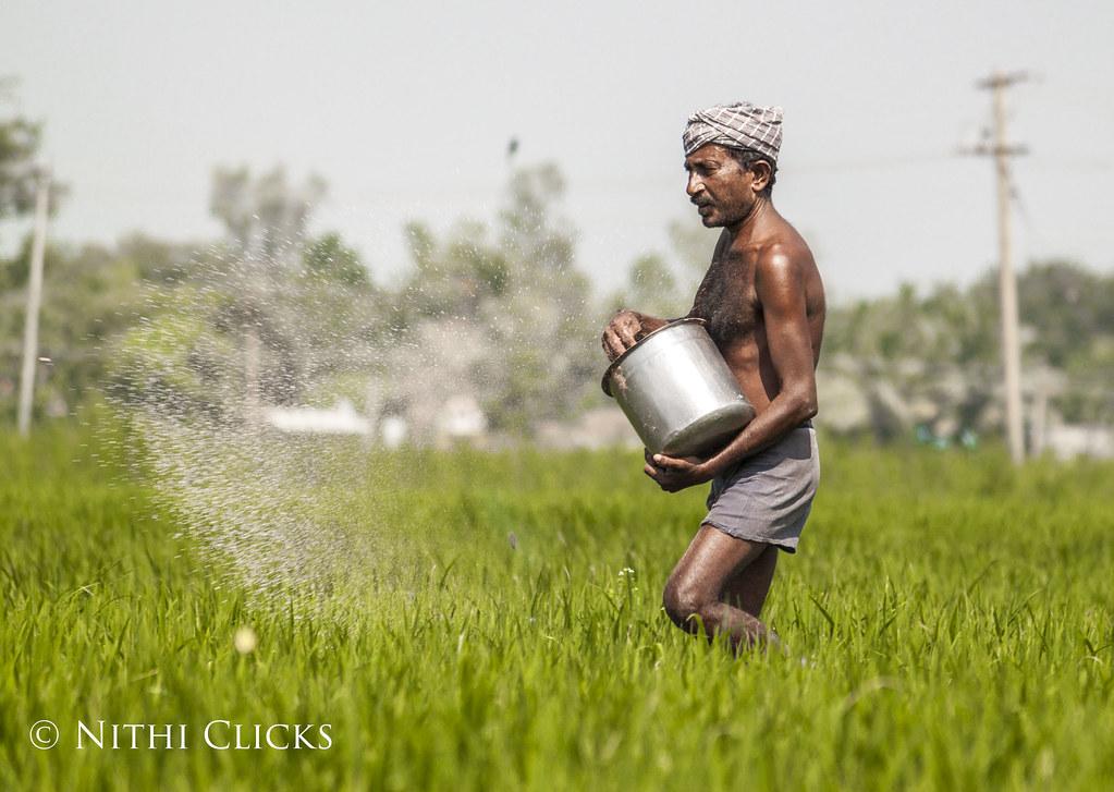 493 words short essay on an Indian Farmer