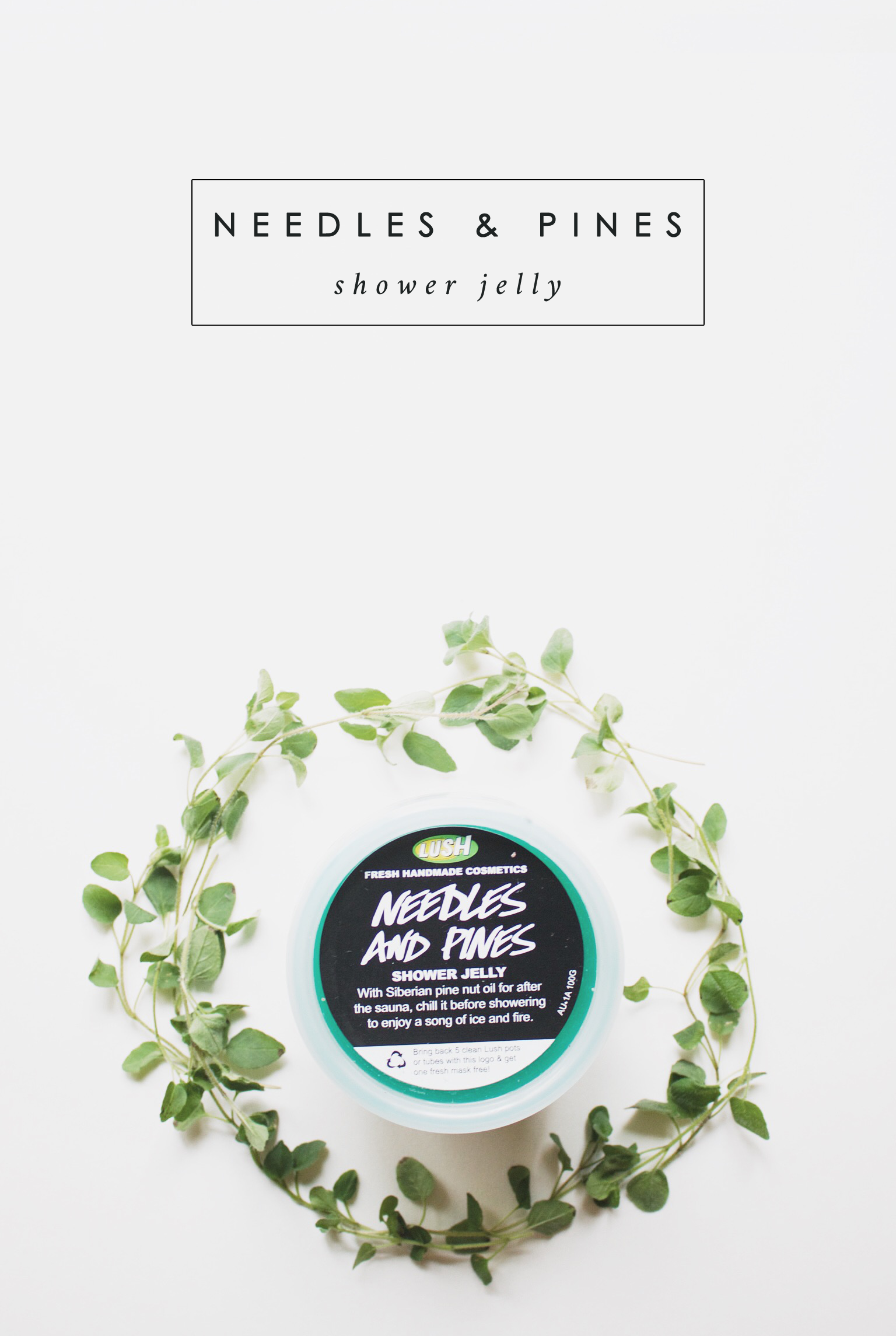 Needles and Pines Shower Jelly, Lush, Haul, Beauty, Bramble and Thorn