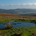 Long Mynd Pond