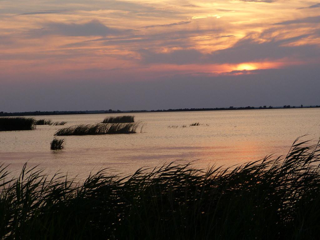 Cedar Island National Wildlife Refuge Jobs
