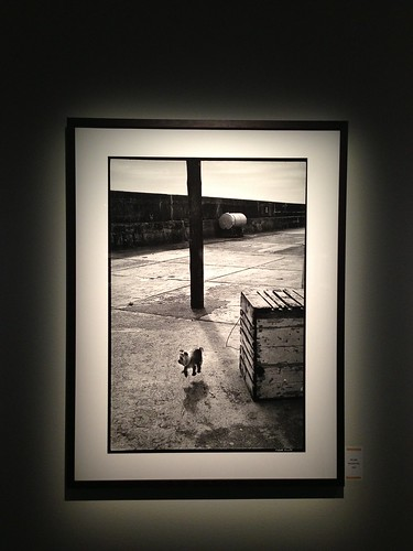 elliott erwitt at fotografiska 2014