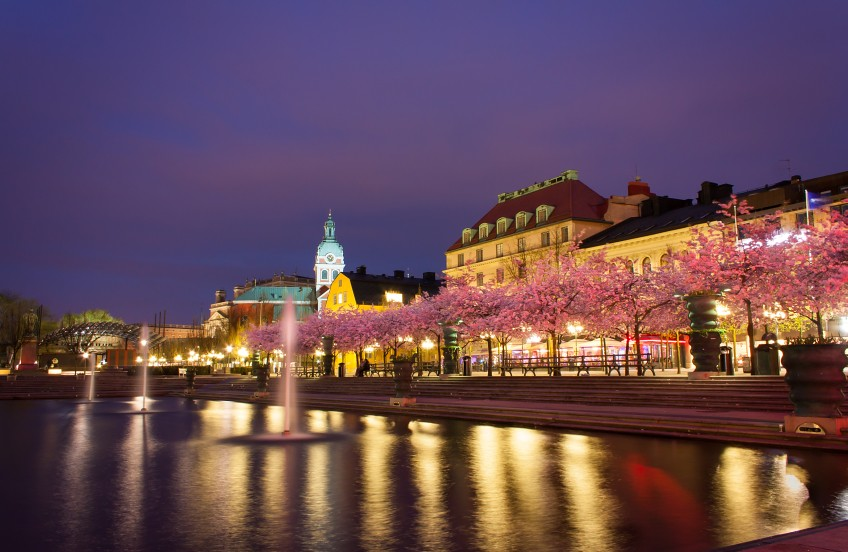 Terms Of Use >> Cherry Blossoms at Night, Kungsträdgården, Stockholm, Swed ...