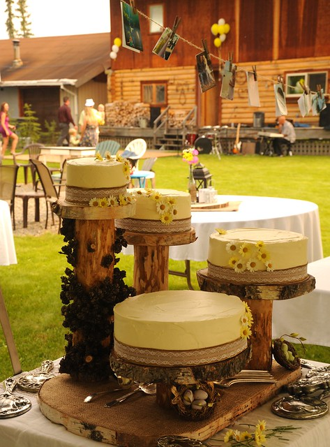 Outdoors traditional country style: wedding cakes, yellow icing, daisies, logs, lace, family ...