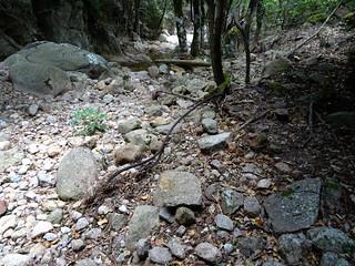 Vestiges de câbles de téléphérique entre les confluences Velacu/Carciara et Frassiccia/Carciara