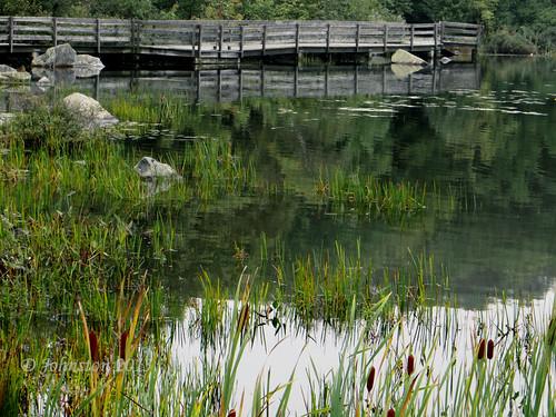 Lake 022