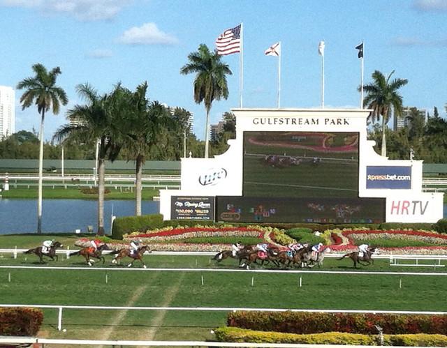 Gulfstream Hollywood Fl 15