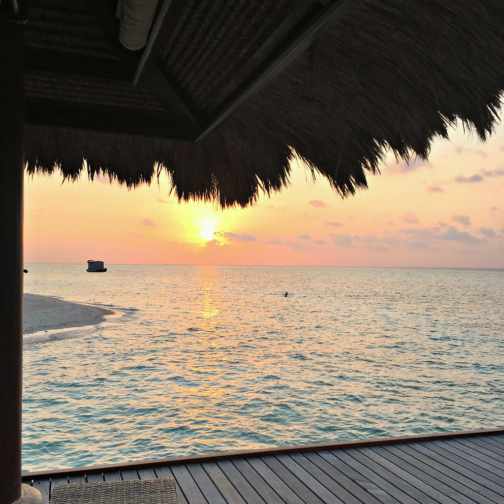 B Maldives Photo Diary The Little Magpie 63 (2)