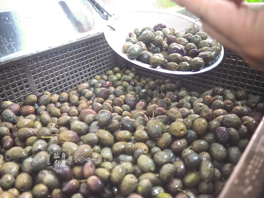 孤身廚房-台灣唯一自榨的優質初榨橄欖油14