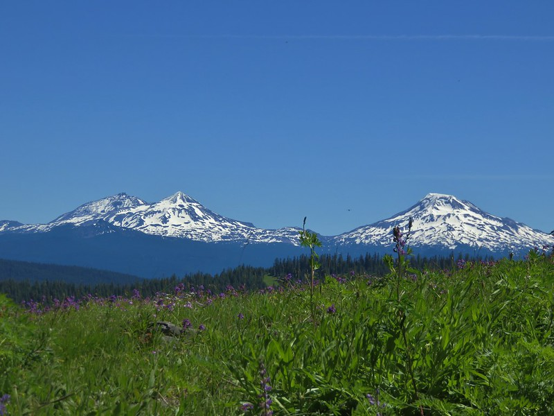 The Three Sisters from a meaow along the Rebel Rock Trail