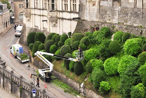 Gartenreise Tal der Loire Schlösser der Loire Blois Schloss Château Royal Gärten des Königs Jardins du Roy Gärtner Heckenschnitt Formschnitt Foto Brigitte Stolle Juni 2016