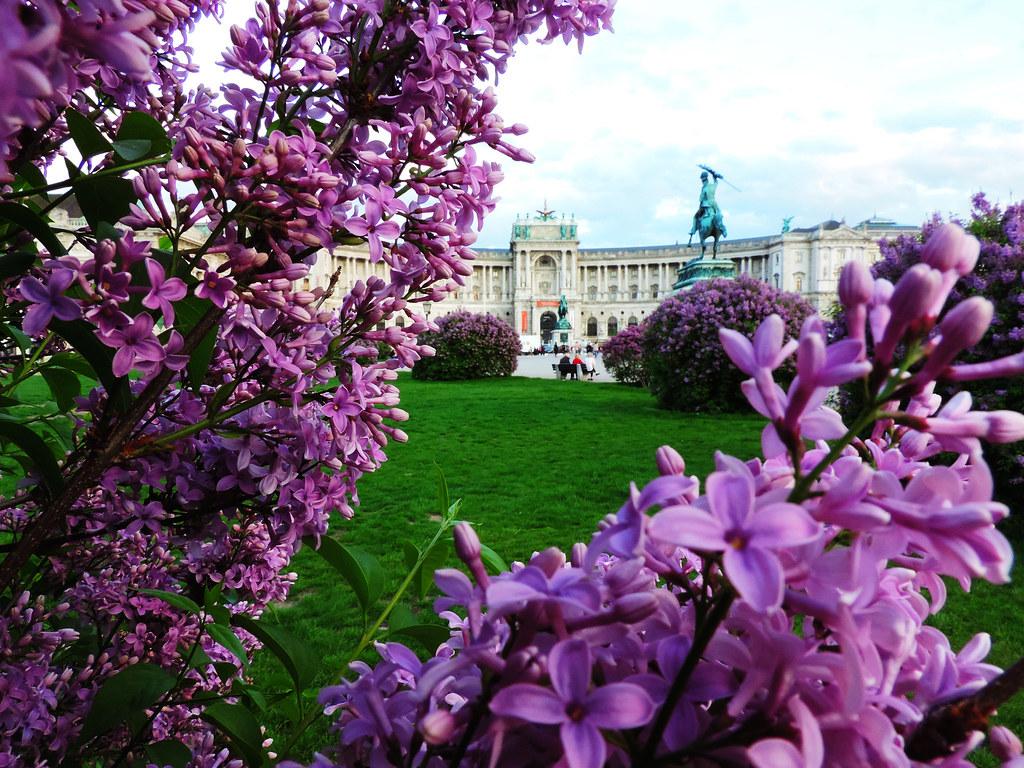 Festival Of Flowers: Heldenplatz, Vienna