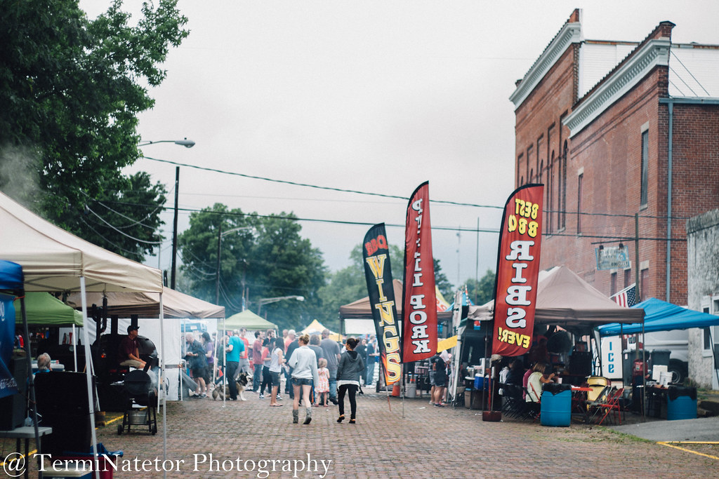 Thoughts from the Homer Soda Fest 2016 // TermiNatetor Photography