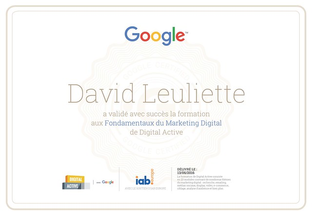 Diplome Marketing de David Leuliette