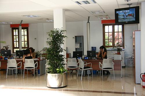 Noticias de ag imes el ayuntamiento de ag imes integra la for Oficina tributaria canaria