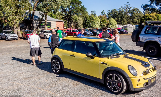 clubMINI at Kinglake 1000 (2 of 4)