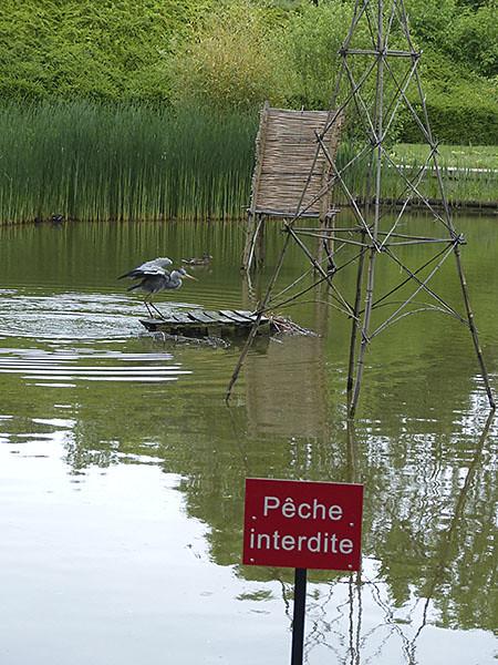 pêche interdeite 2