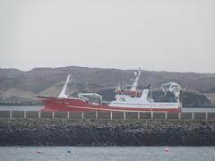 P1312601