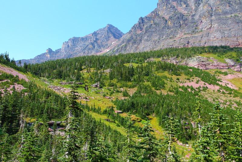 IMG_0007 Cobalt Lake Trail, Glacier National Park