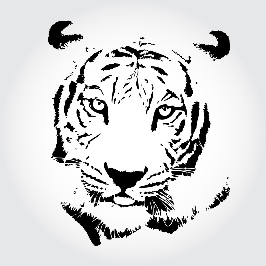Line Drawing Of A Tiger S Face : Tiger drawing sketch isolated backgrond arzt