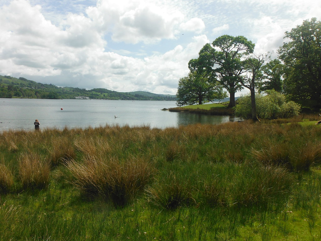 Brathay Hall Grounds 4