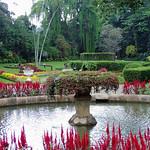 Peradeniya - Garden Fountain