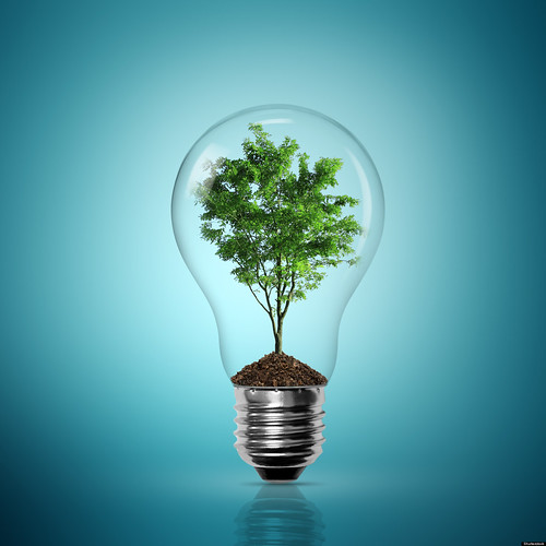 Sustainable Innovation Questions Answered