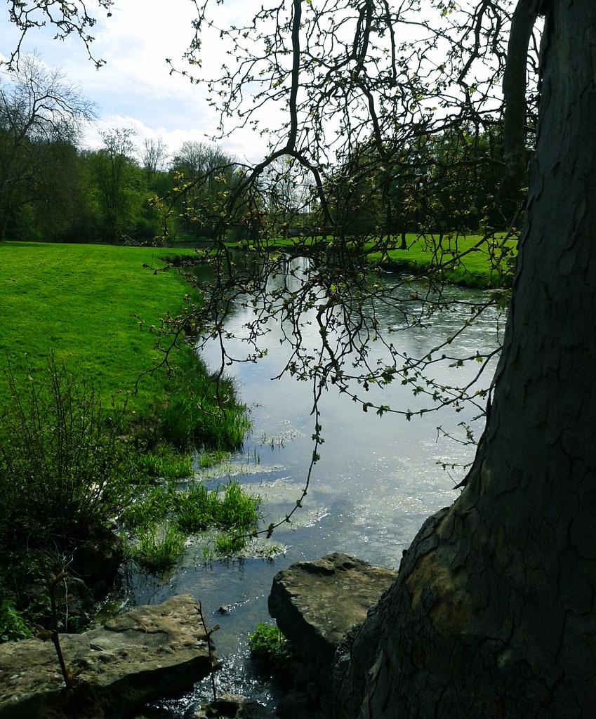 Jardin anglais jardin anglais du parc du ch teau de for Jardin anglais rambouillet