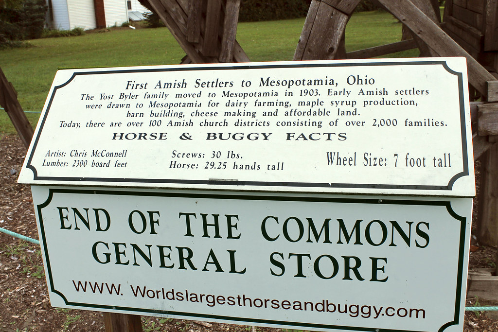 Mesopotamia Township End Of The Commons Quot Horse Amp Buggy