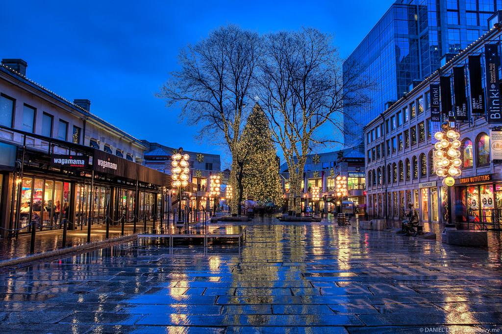 7 Christmas Tree