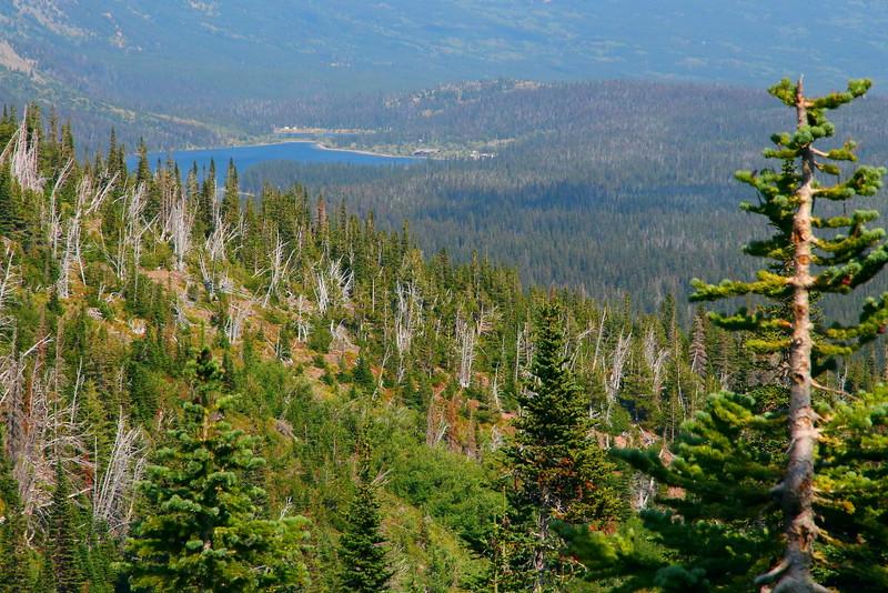 IMG_0166 Cobalt Lake Trail