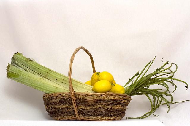 Bodegón con cardo, limones y tagarninas