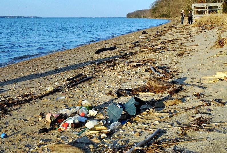 Virginia Beach Trash Collection Thanksgiving