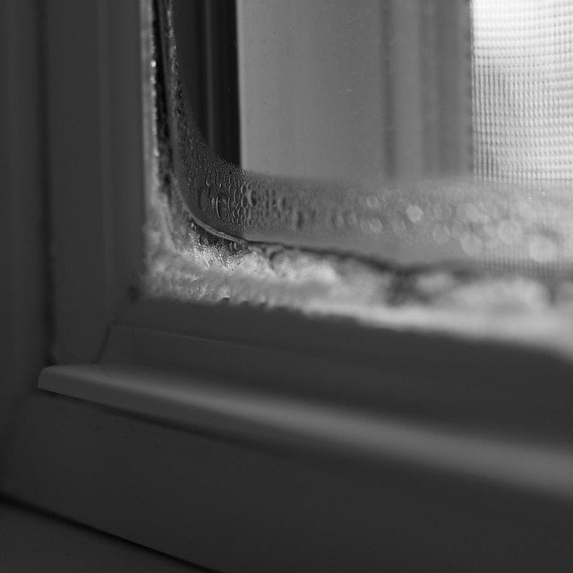 Froid de l 39 int rieur as cold as ice flickr photo sharing for A l interieur movie