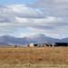 Lesotho - Maseru Mazenod Reservoir Pipelines&Villages - John Hogg - 090624 (28)