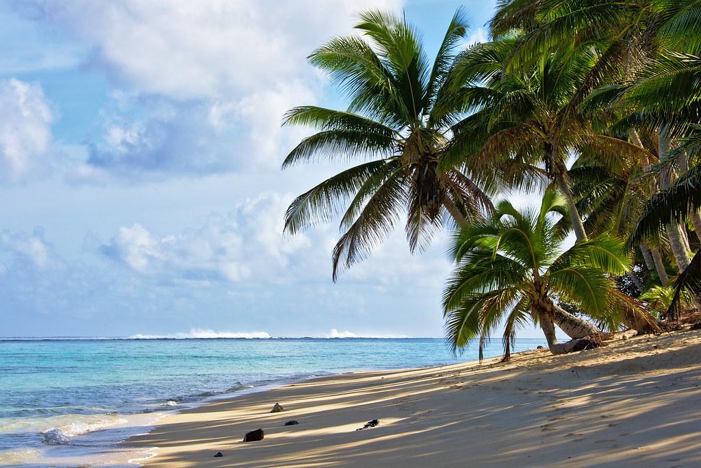 Coconut Palms Beach Resort  New Smyrna Beach Fl