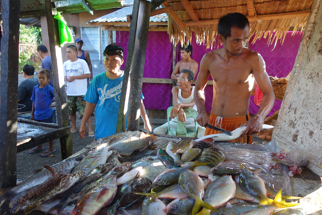 Fish market in tacloban city the philippines fao for City fish market